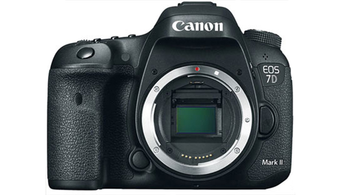 Canon EOS 7D Mark II: A Match for a Heavyweight? 1