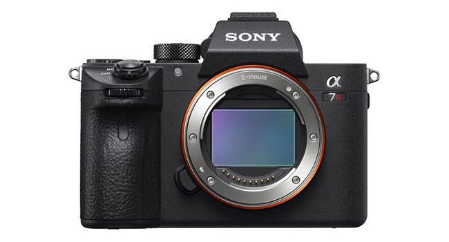 Sony a7R III: The Most Well-Rounded Mirrorless Camera 13