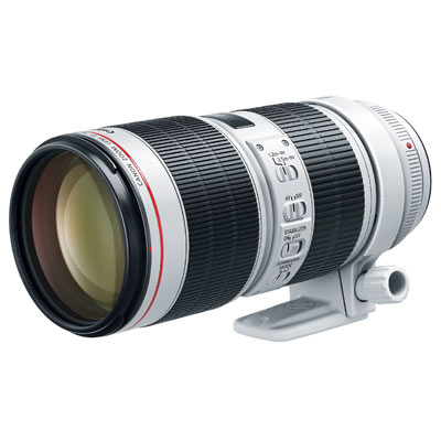 Best Lenses You Will Ever Own Image 4