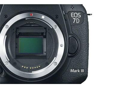 Canon EOS 7D Mark III Image