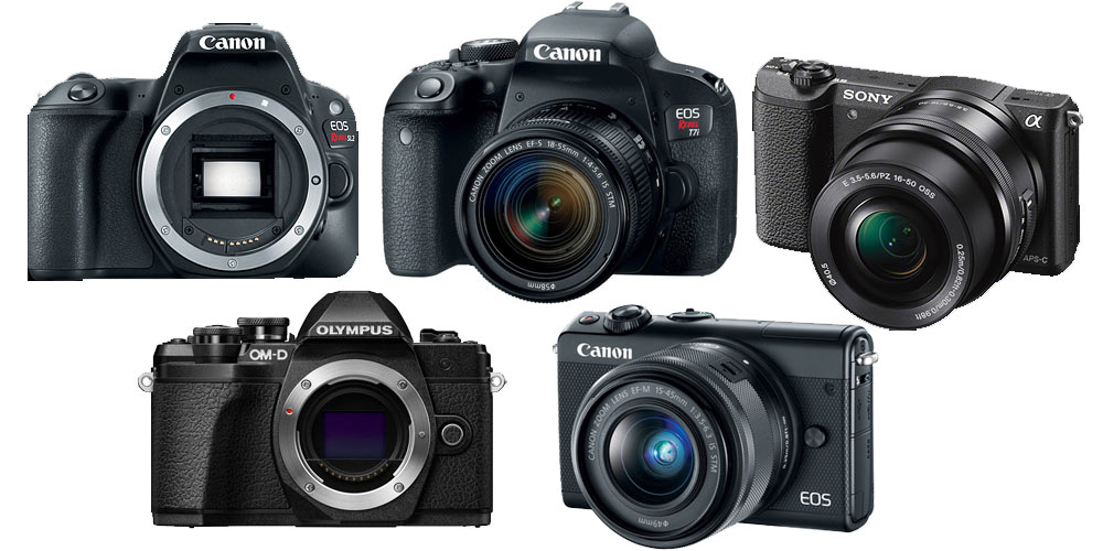 Best Cameras for Beginners Image