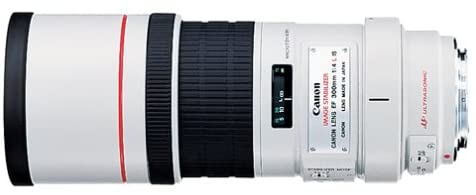 Canon EF 300mm f/4L IS USM Image