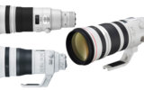 Best Canon Lenses for Wildlife Photography Image