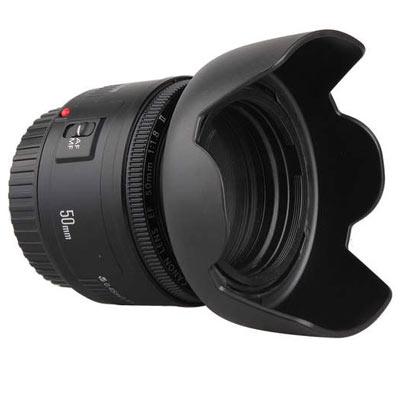 Canon EF 50mm f/1.8 II Image 2