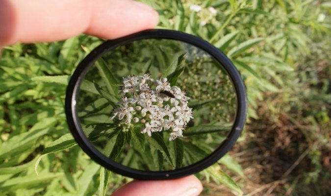 5 Best Polarizing Filters 4