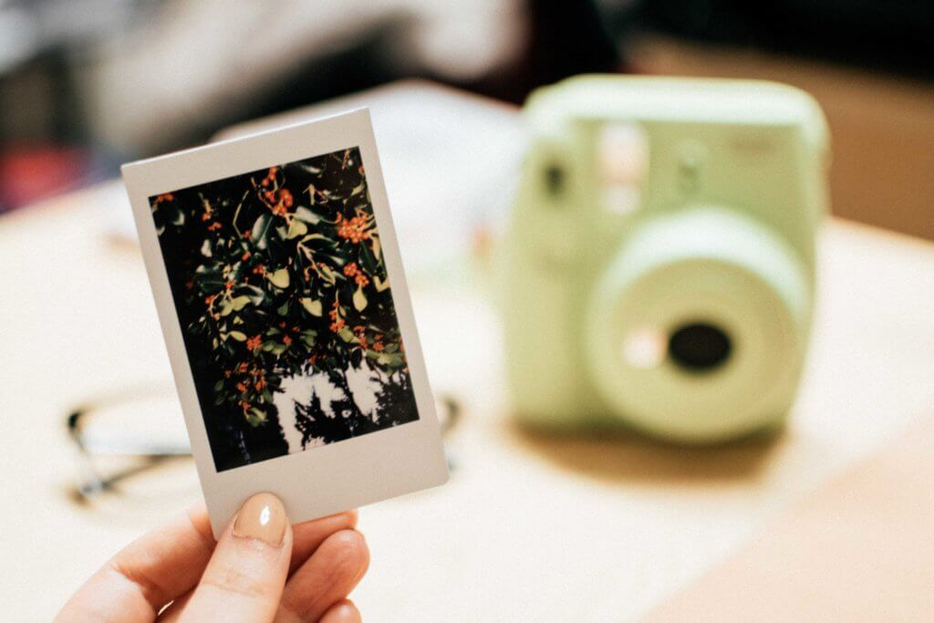 Instant Film Cameras Image