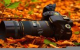 Best Canon Cameras Images