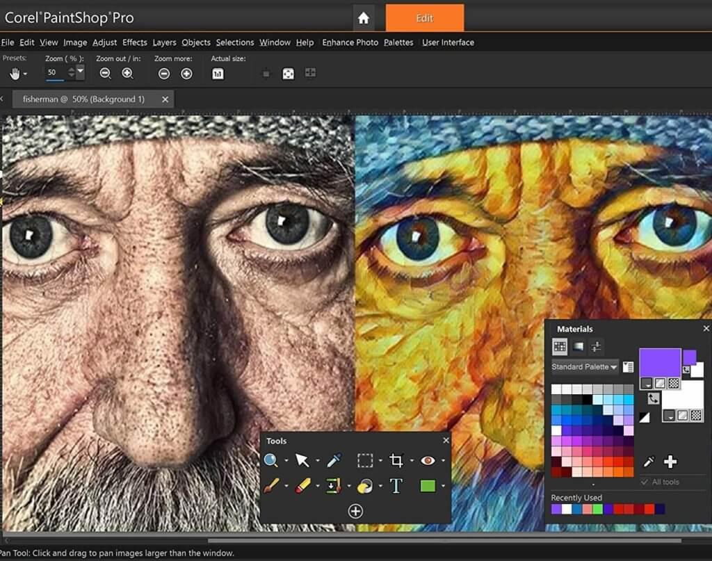PaintShop Pro 2019 Image 1