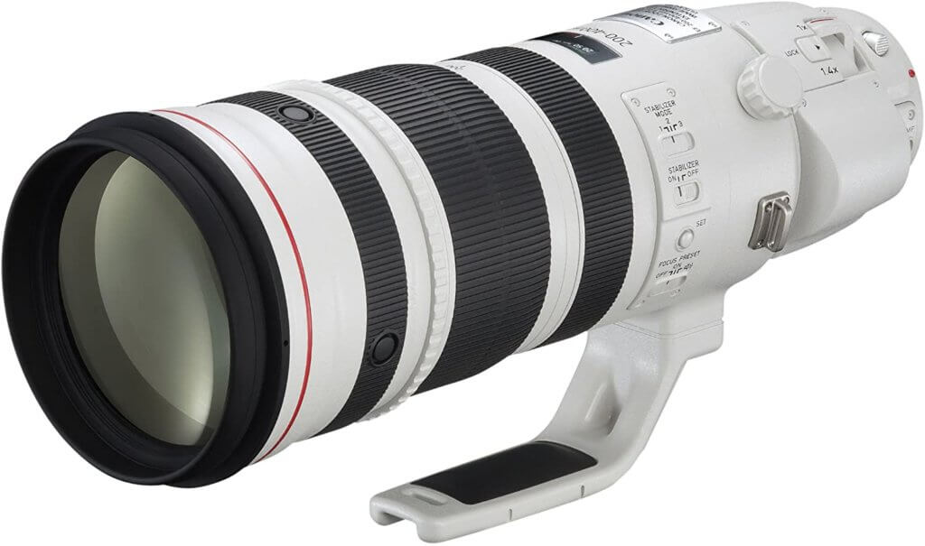 Canon EF 200-400mm f:4L IS USM Image