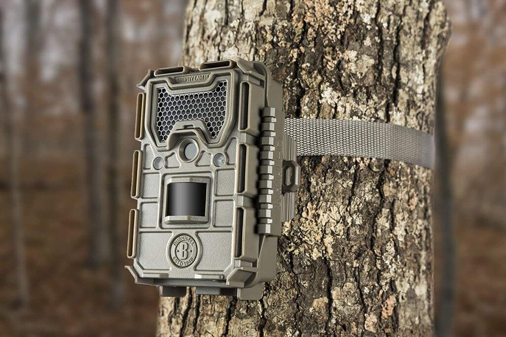 Best Trail Cameras Image