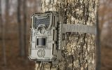Best Trail Cameras Image