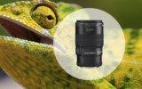 100mm Lenses Image