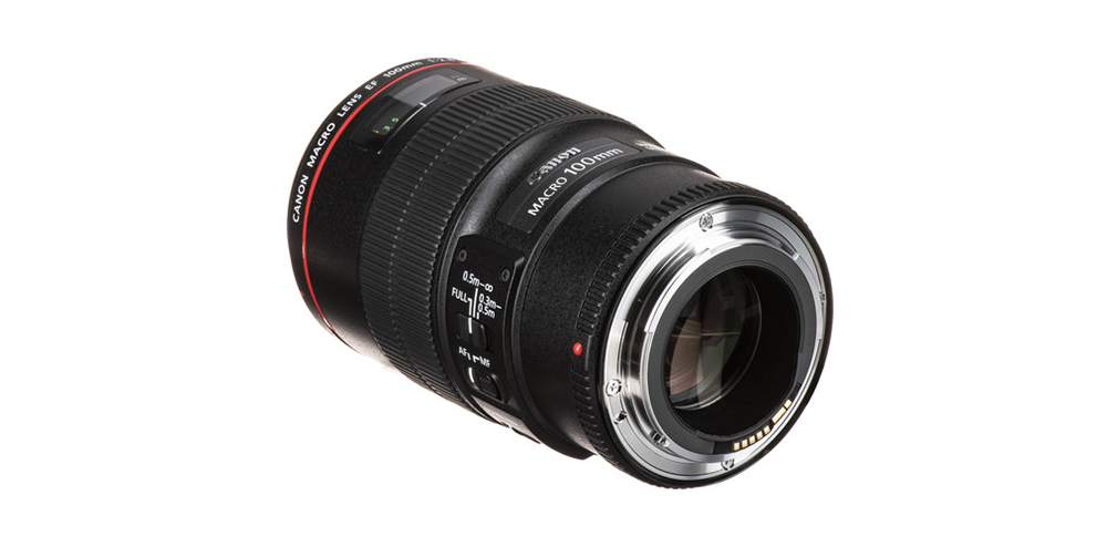 Canon EF 100mm f/2.8L Macro IS USM Image 2