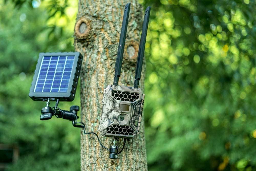 Best Cellular Trail Cameras Images