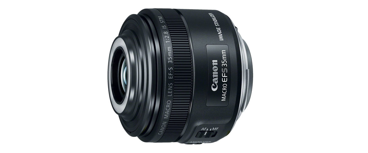 Why Everyone Loves The Canon EF-S 35mm F/2.8 Macro IS STM
