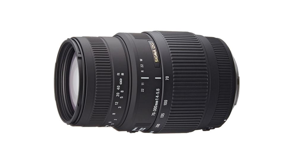 Sigma 70-300mm f/4-5.6 APO DG Macro Image