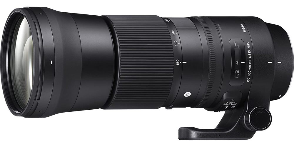 Sigma 150-600mm f/5-6.3 DG OS HSM Contemporary Image