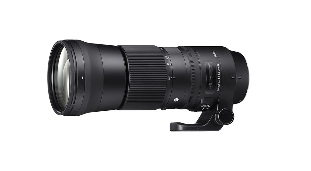 Sigma 150-600mm f/5-6.3 DG OS HSM Contemporary Image