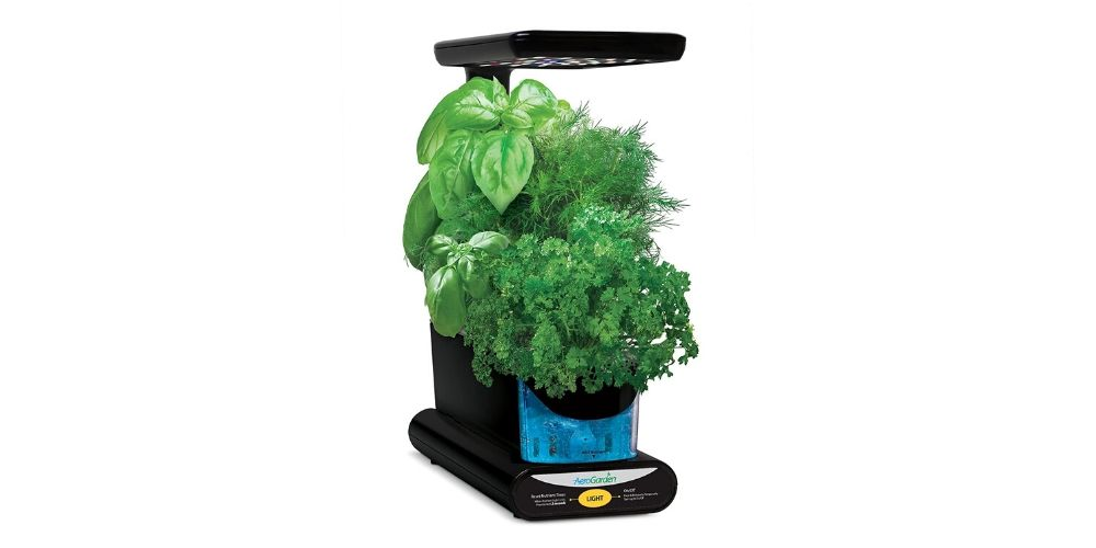 Sprout by AeroGarden Image