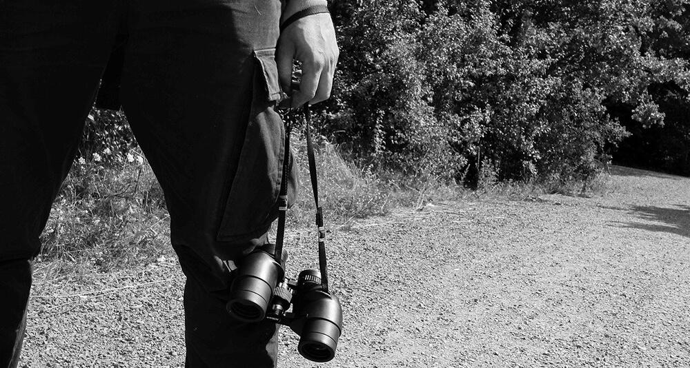 Bushnell 10×42 Binoculars Image