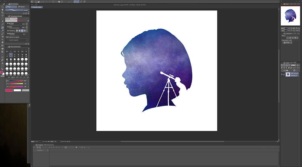 Clip Studio Paint Pro Image 1