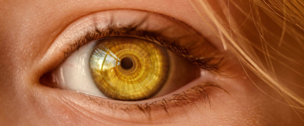 Tokina Zoom Lenses Under $1000 Image
