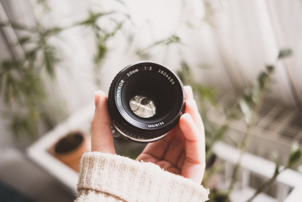 Nikon Prime Lenses Under $1000 Image