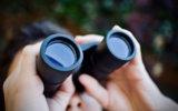 Bushnell 10x50 Binoculars Image