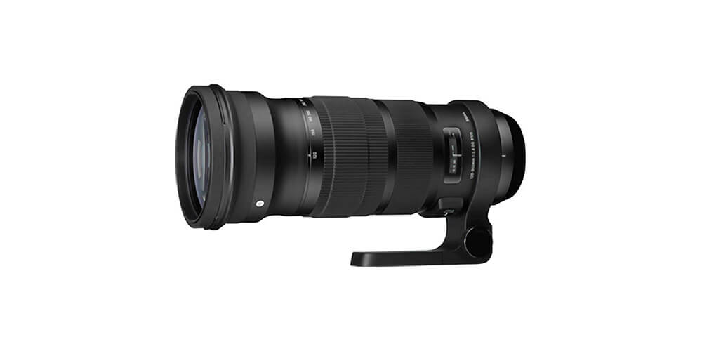 Sigma 120-300mm f/2.8 DG OS HSM Sports Image